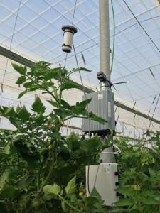 Monitorizacion de cultivos Interconnecta Hortisys