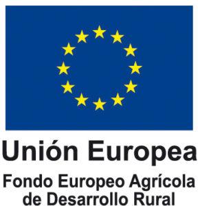 logotipo UE Union Europea Fondo Feder