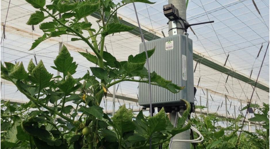 Ceres, monitorización automática de cultivos