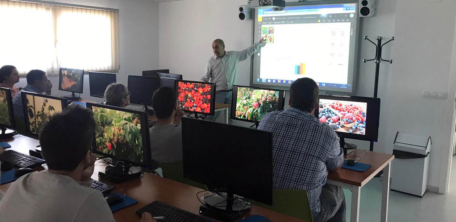 Proyecto de Modelización en Coop. Costa de Huelva